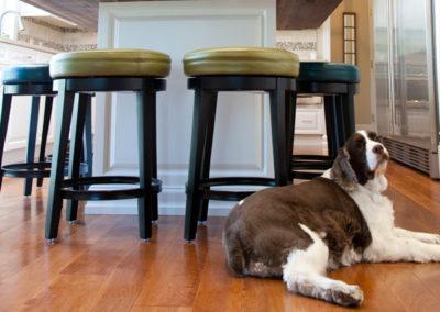 birch flooring in kitchen