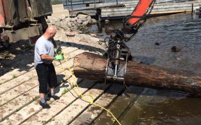 Logs End Reclaims Massive White Oak