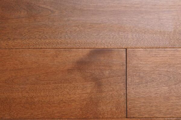english chestnut birch hardwood