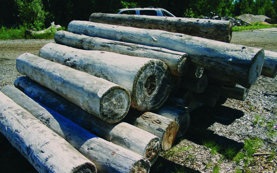 The Conscious Builder Visits Logs End
