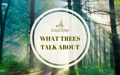 The Boreal Forest: What Trees Talk About