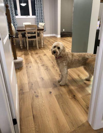 hardwood-flooring-ottawa-frenchcut5009
